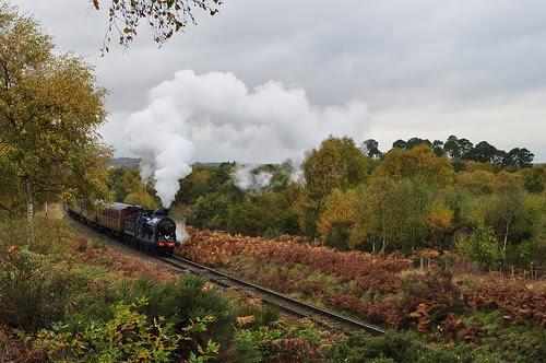 Caledonian Autumn