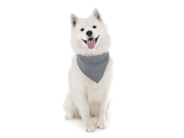 Mechaly Dog Plain Bandanas - 2 Pack - Scarf Triangle Bibs for Small, Medium and Large Puppies, Dogs and Cats - Grey for $11