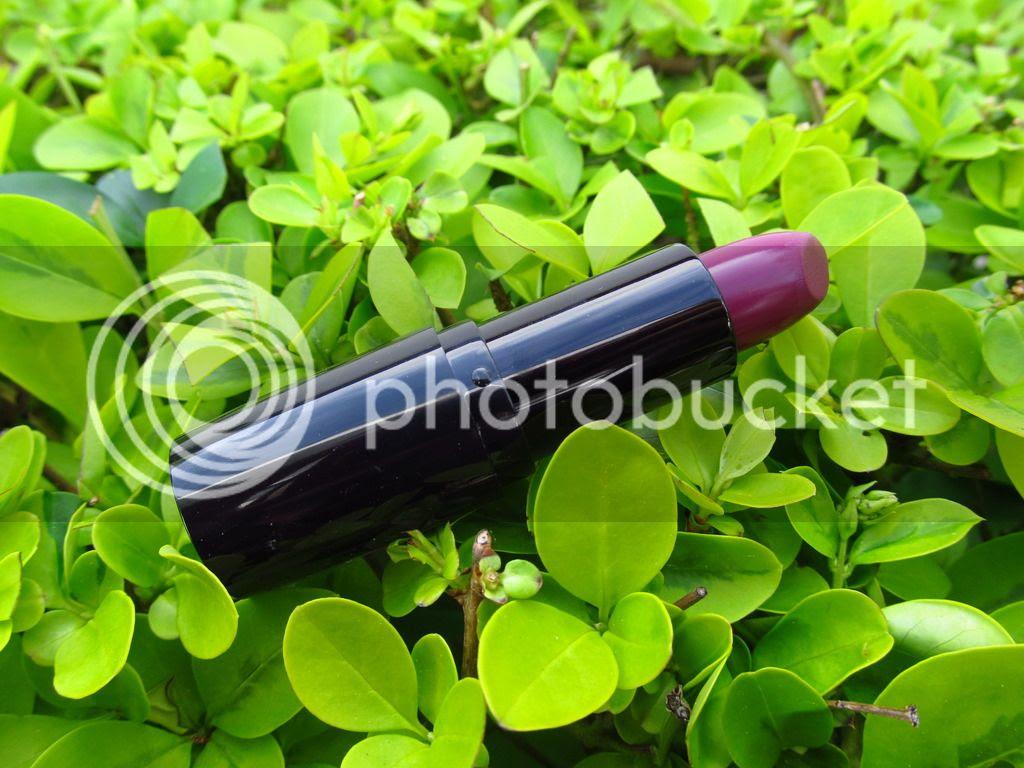 plum noir petrizzio