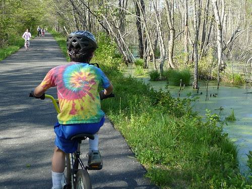 Biking next to the swamp
