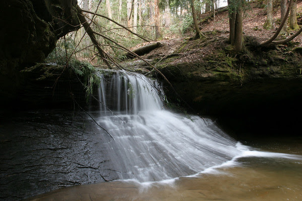 Creation Falls, Red River Gorge