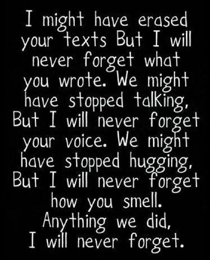 Quotes About Never Forget You 216 Quotes