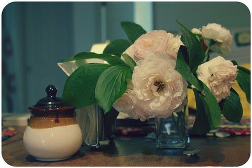 maeve flowers