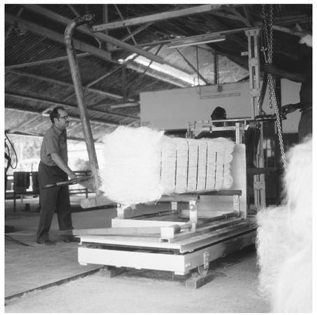 Manufacturing sisal at the Amboni Estate in Tanzania.