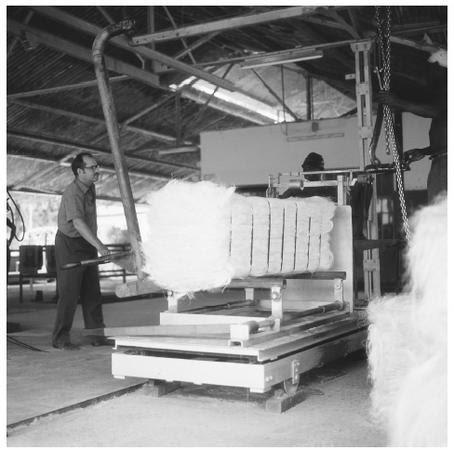 Manufacturing sisal at the Amboni Estate in Tanzania.