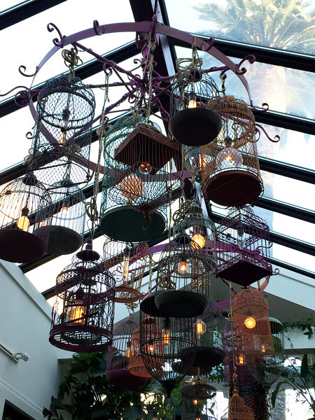Birdcage Chandelier and the Palm House Namesake