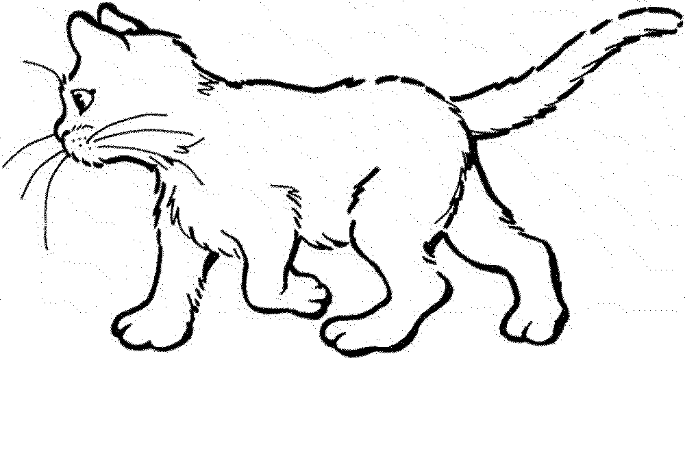 61 Top Coloring Pages Of Baby Cats For Free