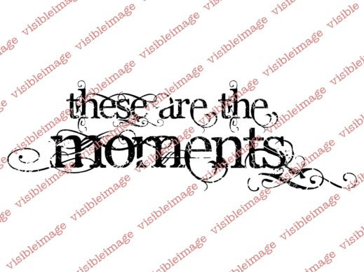 Visible Image These Are The Moments stamp