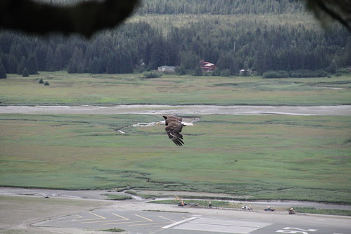 Alaska 299