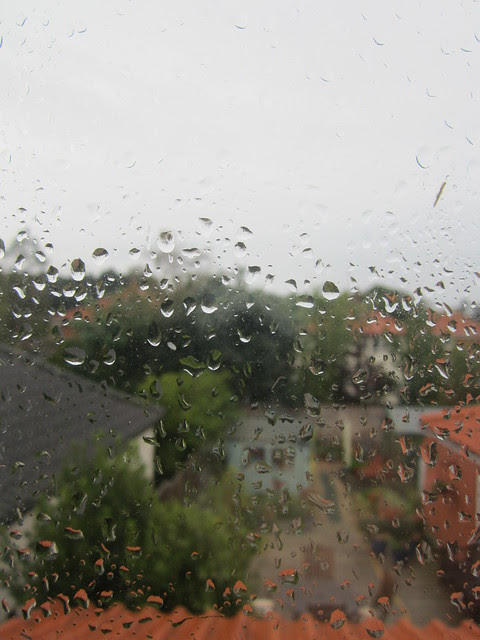 dreary day (1)