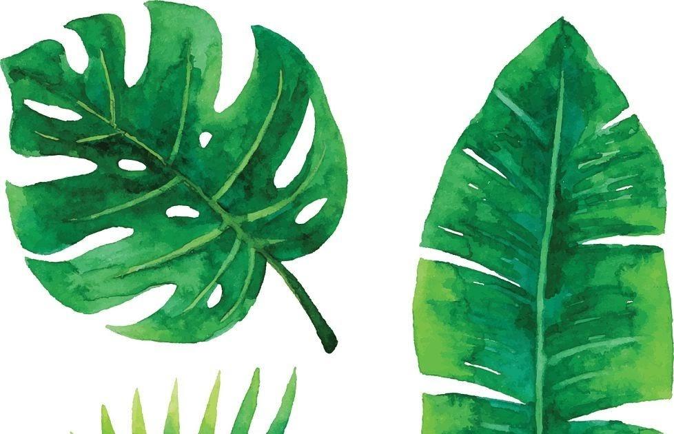 tropische blätter zeichnen