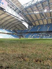 Murawa na Stadionie Miejskim w Poznaniu