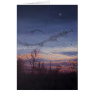 Murmuration Holiday Card