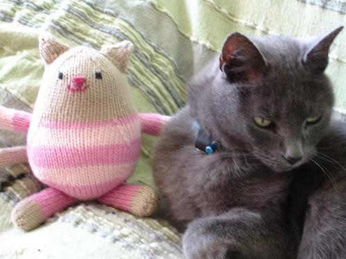 Kitty cat 002