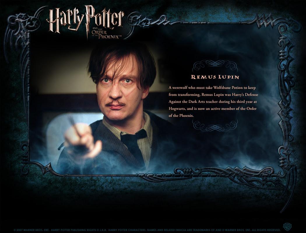 Character Profile - Harry Potter Photo (130066) - Fanpop