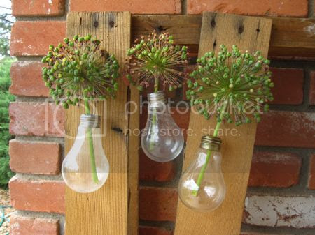 Light Bulb Vertical Gardens