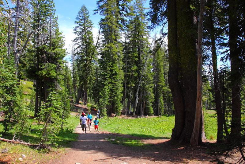 IMG_1190 Sifford Lake Trail