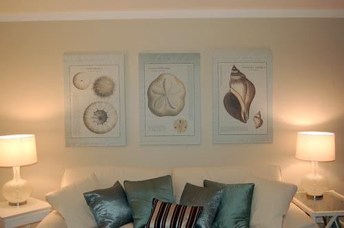 Shell prints