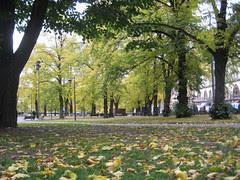 Syksy Johanneksen puistossa