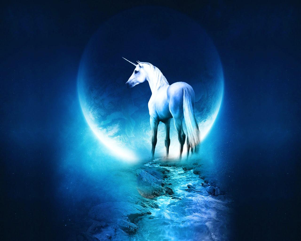 Fantasy images Unicorn wallpaper photos 31301602