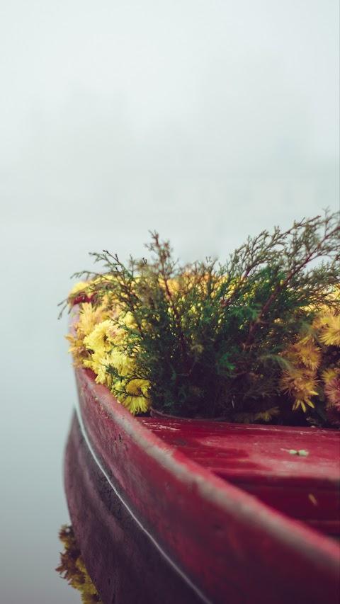 خلفية لمزهرية من الورد الاصفر بدقة عالية hd