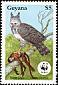 Harpy Eagle Harpia harpyja