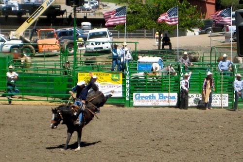 Livermore Cowboys