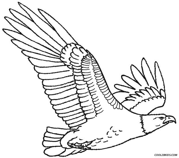 Printable Eagle Coloring Pages For Kids Cool2bKids - Coloring Pages