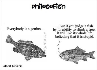 philosofish 28 small
