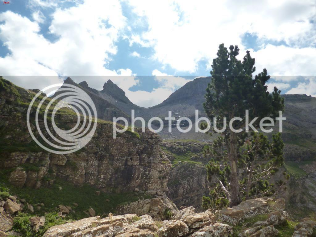 photo BISAURIN10-08-14203_zpse9729423.jpg