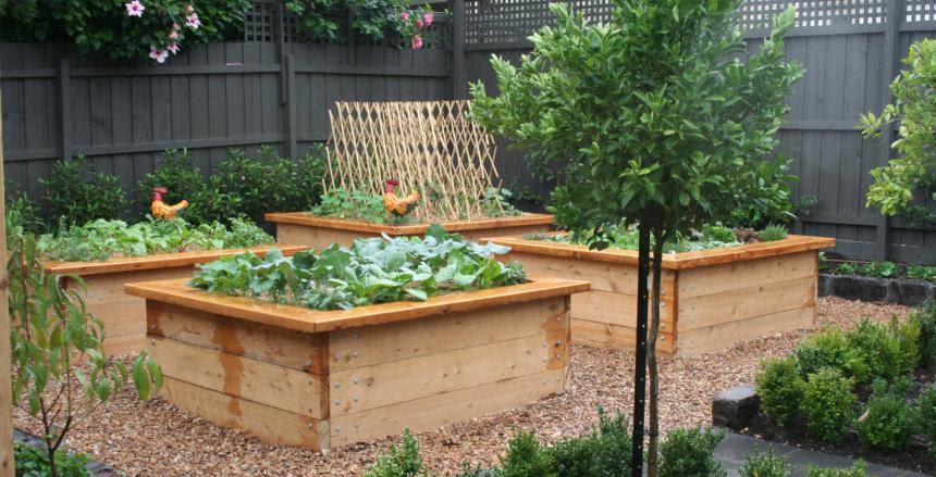 Vegetable Gardens Inspiration - Kitchen Farmer - Australia ...