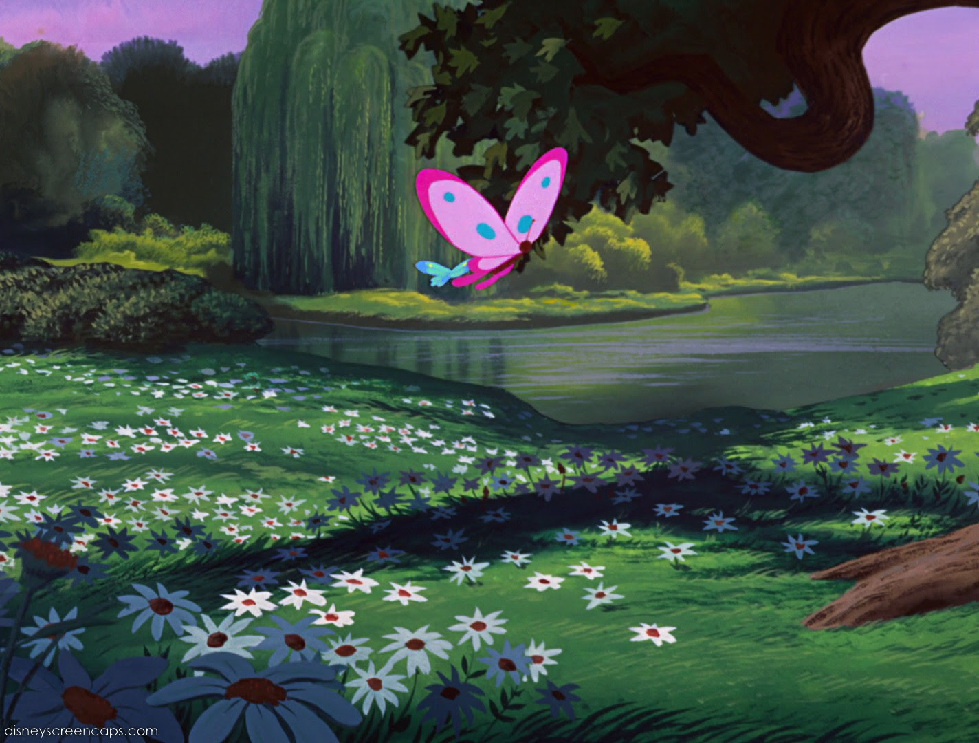 Disney Crossover Images Empty Backdrop From Alice In Wonderland Hd