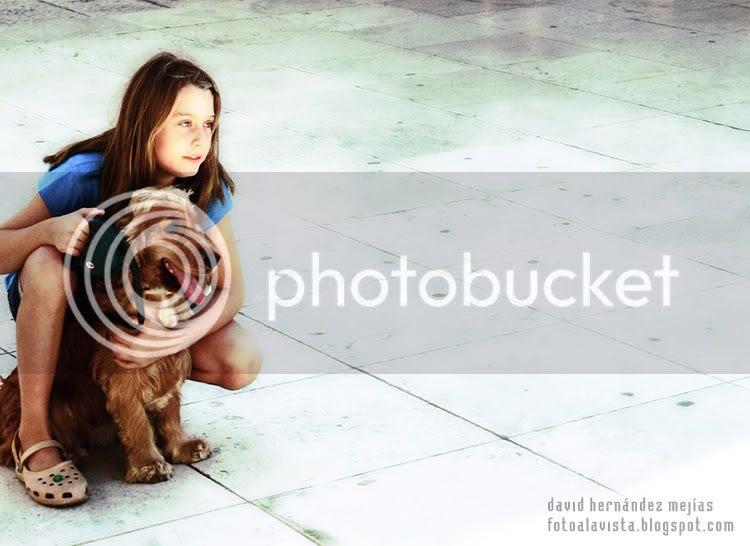 Una niña y un perro miran a lo lejos sobre baldosas de piedra