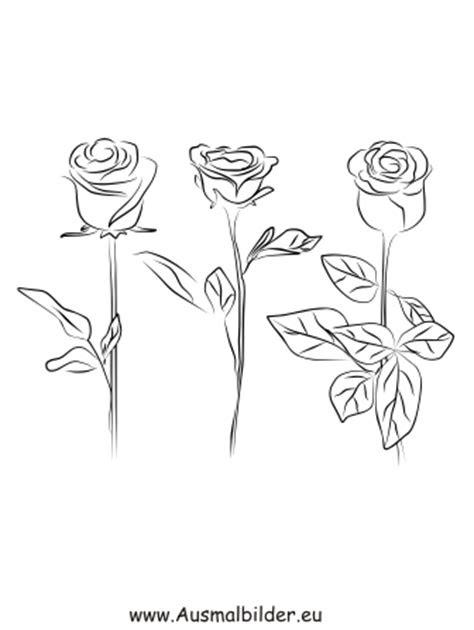 ausmalbilder rosen ausdrucken  kostenlose malvorlagen ideen
