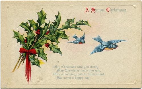 Postcard:  Bluebirds & Holly