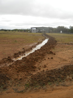 First Swale Trench After Rain