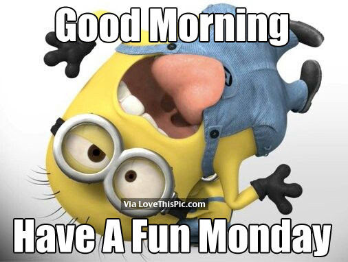 Good Morning Have A Fun Monday Pictures Photos And Images For
