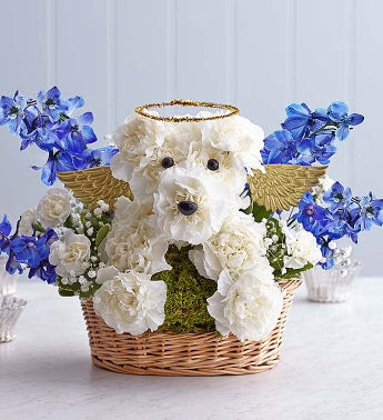 Dog Sympathy Cards Poems Amp Quotes