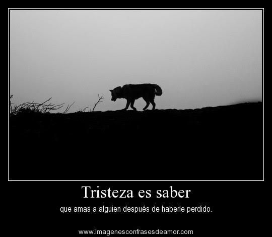 Imagenes De Tristeza Imagenes