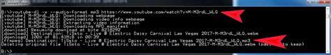 youtube dl convert video audio  mp savetubeorg