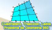 Problema de Geometría 960 (English ESL): Cuadrilátero, Trisección de Lados, Congruencia, Semejanza, Triángulos