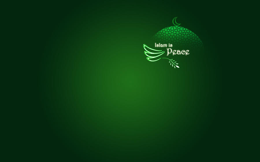 http://fc07.deviantart.net/fs70/i/2010/164/4/0/Islam_is_Peace_by_Sunbirdy.jpg