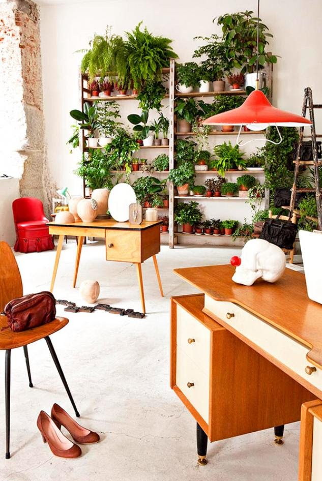 Best Ideas Indoor Garden For Small Apartment