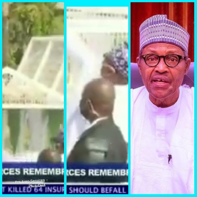 White Pigeons Released By President Buhari At The Armed Forces Remembrances Refused To Fly, Nigerians React (Video)