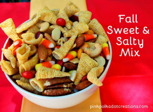 Fall Sweet and Salty Mix