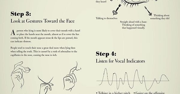How To Detect A Lie Infographic on Wacom Gallery