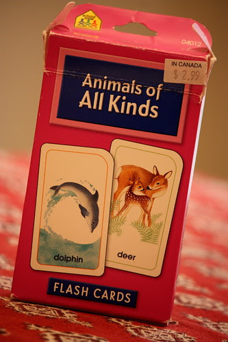 animals of all kinds