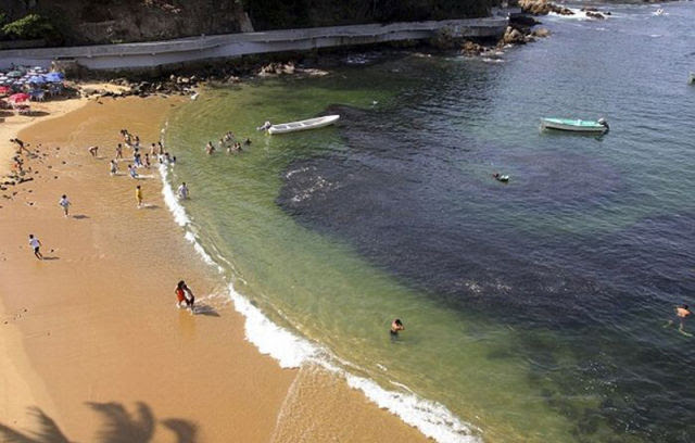 Incríveis cardumes de peixes na costa de Acapulco 05