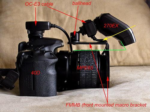 270ex on FMMB, MPE65 macro rig RIMG0985 copy