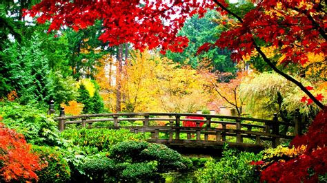 japanese background   awesome hd wallpapers